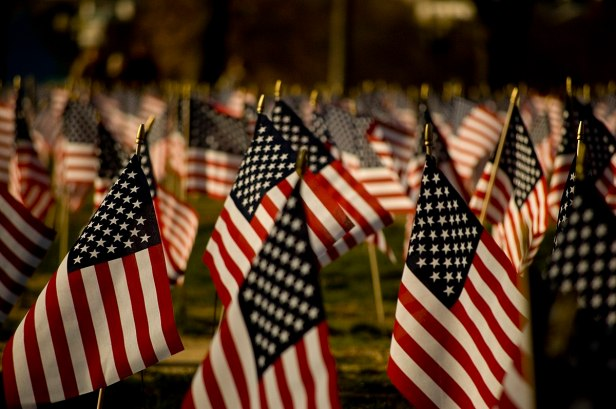 1200px-U.S._flags_on_the_National_Mall,_2007